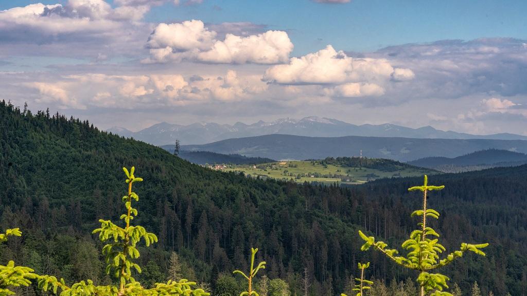 szlak na Krawców Wierch
