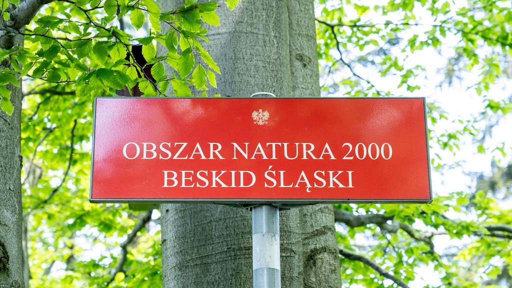 równica w Beskidzie Śląskim