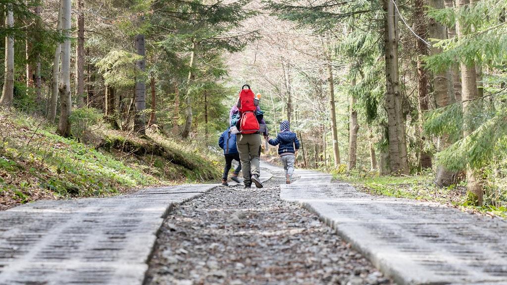 szlak na trzy kopce wislanskie