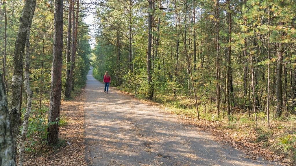 trasa do stawu Wydry