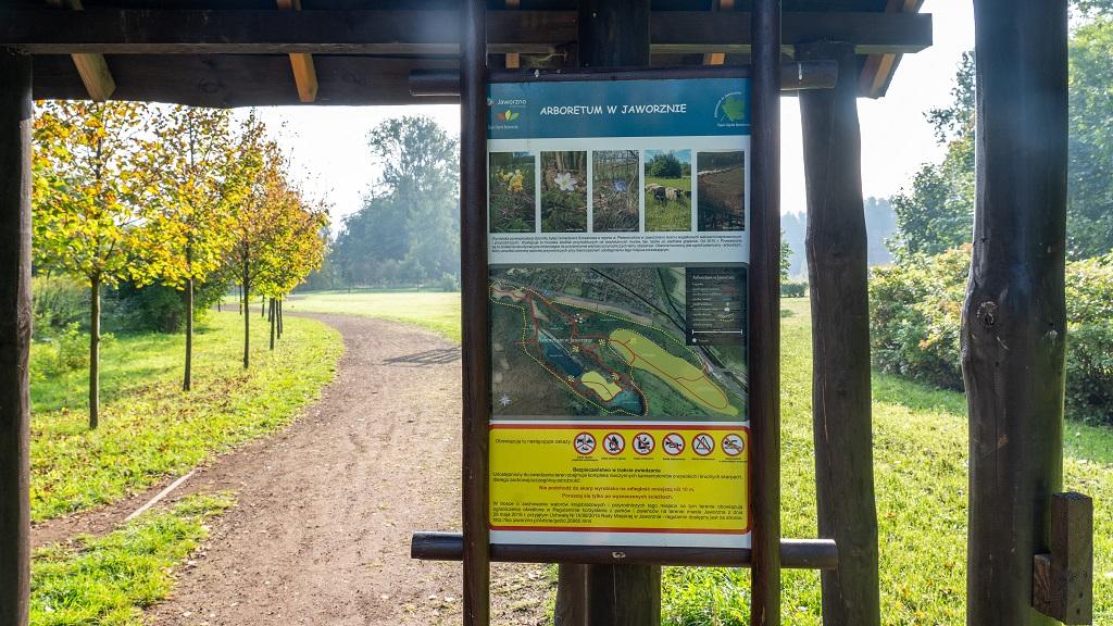 Park Gródek - arboretum w Jaworznie