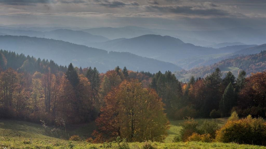panorama z Wierchomli